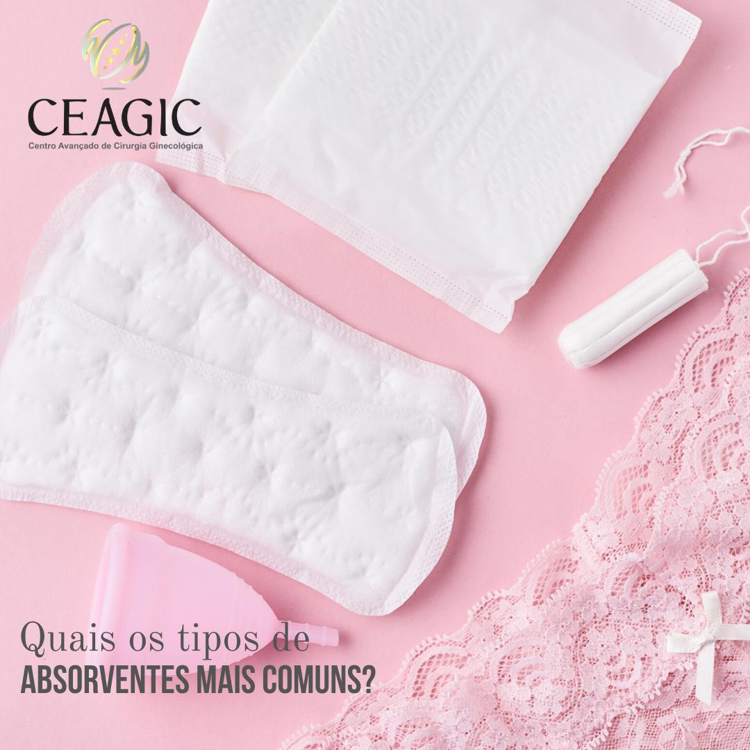 Quais os tipos de absorventes mais comuns?